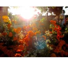 Día de Muertos en el Panteón