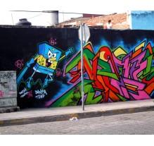 Graffitis ¿En riesgo el nombramiento de Pueblo Mágico?