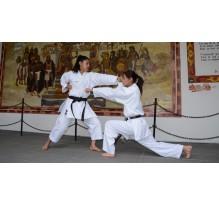 Cholula, sede del Campeonato Centroamericano y del caribe de Karate Do